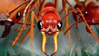 【小熙解说】模拟地下蚁国 进入蚁穴变身蚁后控制整个蚂蚁王国的发展!