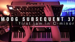Moog Subsequent 37 - jam no.1 in C-minor