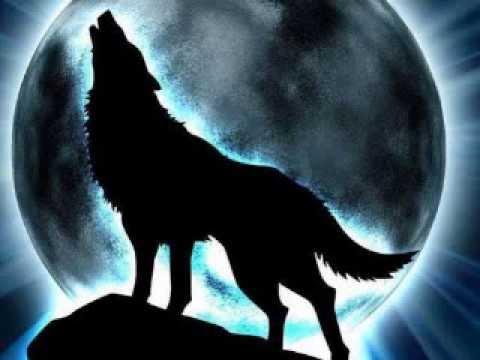 Exo - Wolf (Chinese Ver.) [Nightcore Mix. ]