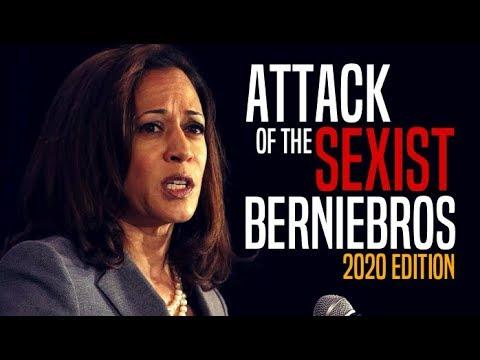 Democrats Furious Over Progressives' Skepticism of Kamala Harris
