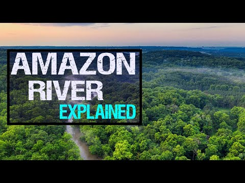 Amazon River Explained in under 3 Minutes