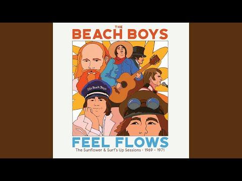 The Beach Boys - Awake mp3 ke stažení