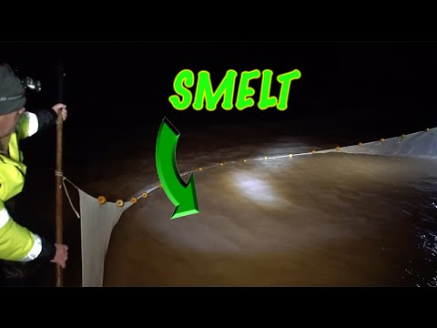 SMELT FISHING In Lake Superior (HUGE NETS FULL)