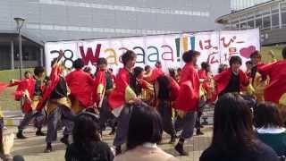 2013年11月2日 愛知淑徳大学・長久手キャンパス 第38回淑楓祭 はっぴー...