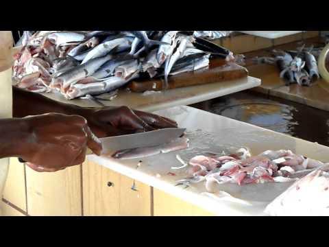 Filleting Flying Fish In Bridgetown Fishmarket, Barbados