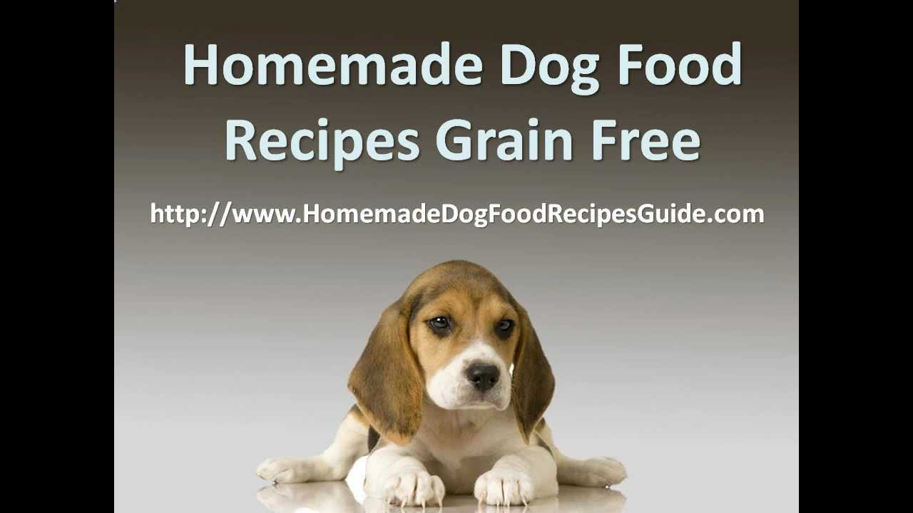 Homemade dog food recipes grain free youtube forumfinder Image collections