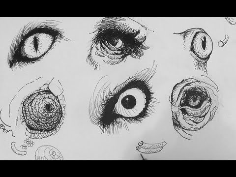 Pen ink drawing tutorials how to draw realistic animal eyes pen ink drawing tutorials how to draw realistic animal eyes ccuart Image collections