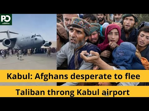 Kabul: Afghans desperate to flee Taliban throng Kabul airport   Pakistan Observer