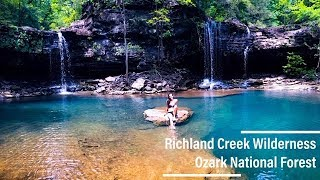Richland Creek Wilderness | Tẁin Falls | Ozark National Forest