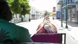 Barb and Dave on Horse and Buggy ride in Nassua Bahamas.AVI