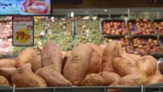 حفر العلامات التجارية على المنتجات الزراعية بالليزر