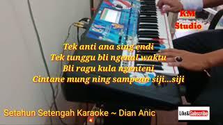 Download Lagu DIAN ANIC I SETAHUN SETENGAH KARAOKE LIRIK mp3
