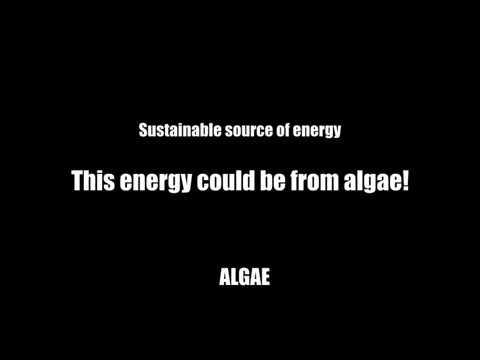 Biofuels from Algae Explanatory Video (Demi)