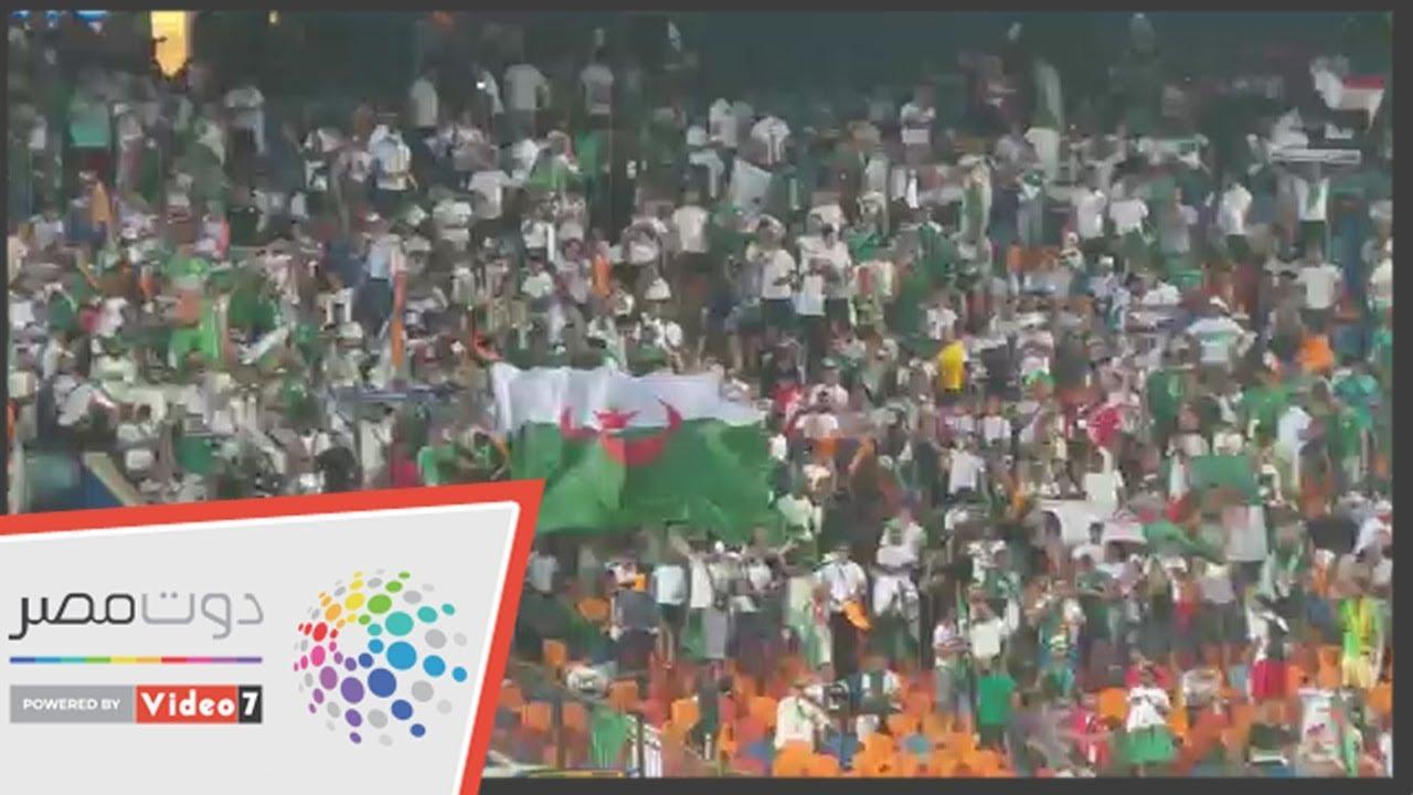 اليوم السابع :جماهير الجزائر تملأ ستاد القاهرة خلال مواجهة نيجيريا