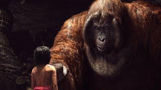 """Through Mowgli"