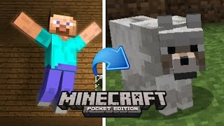 How To turn into any mobs in minecraft pe - command block (no mods)
