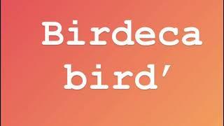 Birdeca bird'