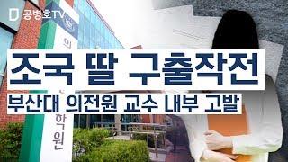 조국 딸 구출작전 / 부산대 의전원 교수 내부 고발 [공병호TV]