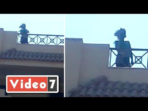خطييير .. أول فيديو للغامض الأخضر لحظة اقتحامه مدينة الإنتاج الإعلامى  - نشر قبل 24 ساعة