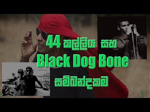 Black Dog Bone And 44 Kalliya Relationship