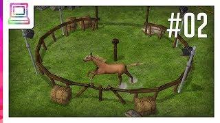 Wildlife Park 2 - Horses (part 2) (Horse Game)