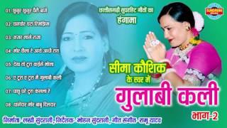GULABI KALI BHAG - 2 - गुलाबी कलि भाग - 2 - Sima Kaushik - Audio Jukebox - Chhattisgarhi Geet