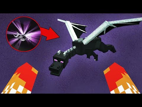 Dumbest Way To Fight The Ender Dragon