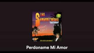 Los sonorritmicos con Jesus Ramirez -- Perdoname mi amor