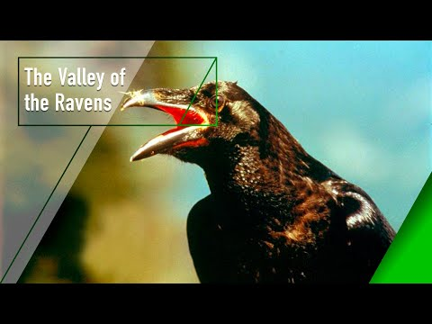 The Valley of the Ravens - The Secrets of Nature