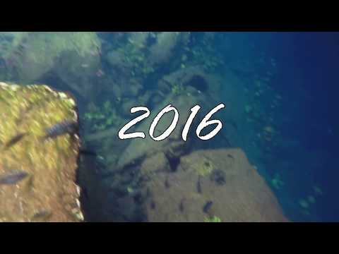 cancun-cenote-snorkeling