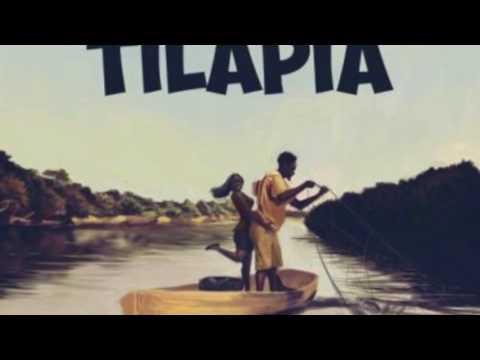 TILAPIA -  (OFFICIAL AUDIO) Mr Eazi ft Medikal