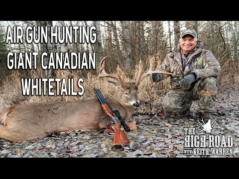 Air Gun Hunting GIANT Canadian Whitetails