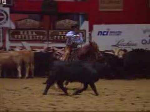 2006 NCHA Futurity Amateur Champion
