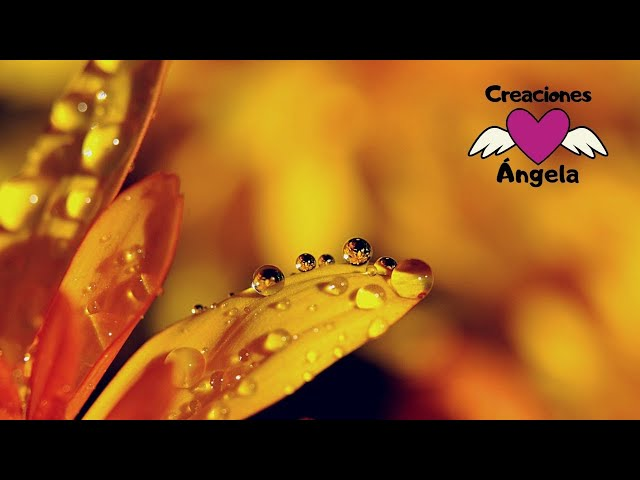 TODO POR CRISTO 🌾 Himno Cantado a Capela