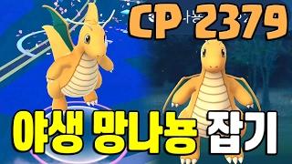 포켓몬고 첫 야생 망나뇽 잡기 도전! CP가 무려 2379 포켓몬GO [Pokemon GO] - 기리