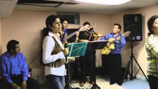 JARANA AL ESTILO DE GUITARRAS AYACUCHANAS