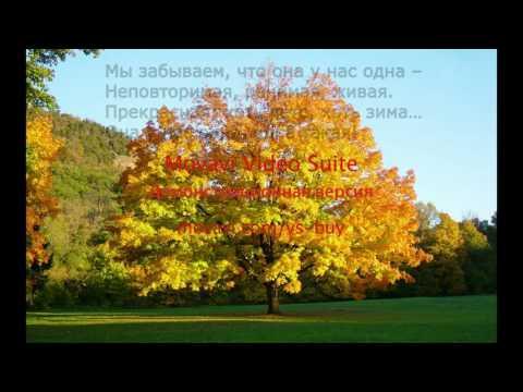 Берегите природу в стихах