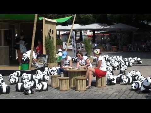 WWF Pandas on Tour Hannover 22-08-2013