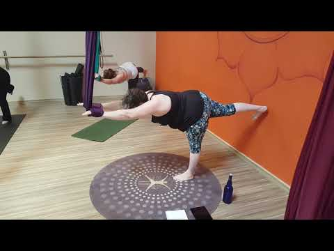 Aireal Yoga Teacher Training Video