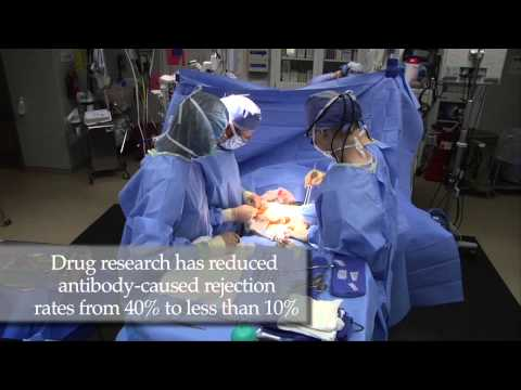 Lowering Rejection Risk in Organ Transplants - Mayo Clinic