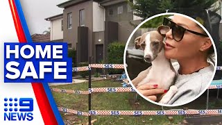 Dog escapes after car smashes into living room | 9 News Australia
