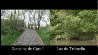 Decouverte video des espaces naturels, pays de Montfort en Broceliande
