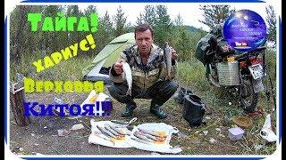 Рыбалка на хариуса Две ночи в тайге Верховья Китоя