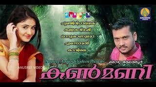 പുഞ്ചിരി പാലഴക് പെണ്ണ് മിന്നിയ പൊന്നഴക് Latest Malayalam Folk songs 2018