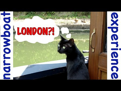 What is it like on the canal in London | Narrowboat Experience | Grand Union Canal | Paddington Arm