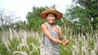 งามข้ามปี - แดง จิตรกร [UnOfficial MV]