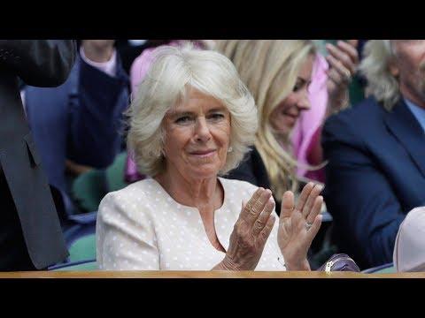 Why wasn't Camilla, the Duchess of Cornwall at the royal wedding?