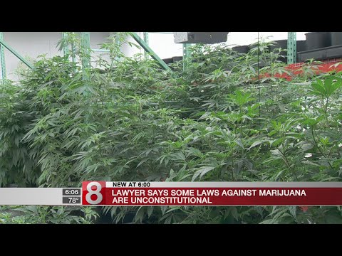 Lawyer: Marijuana prohibition laws unconstitutional