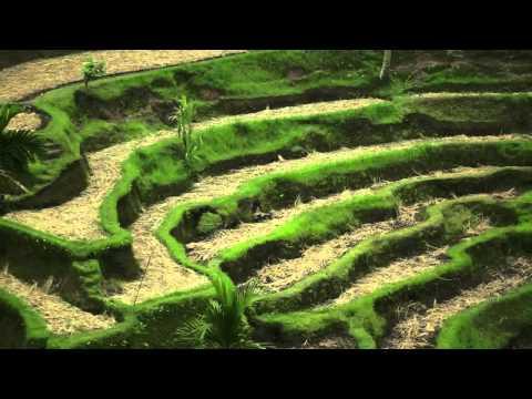 SUBAK (World Heritage, UNESCO )