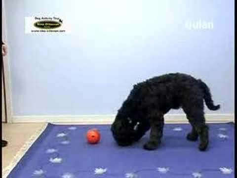 Nina Ottosson Dog Qulan